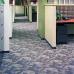 Let ProClean clean your carpets!